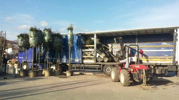 Stock being loaded in Italy